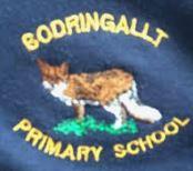 Bodringallt Primary