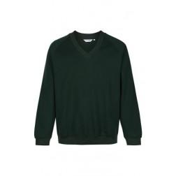 Ynyswen V Neck sweater