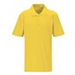 Darran Park polo shirt